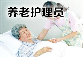 养老护理员