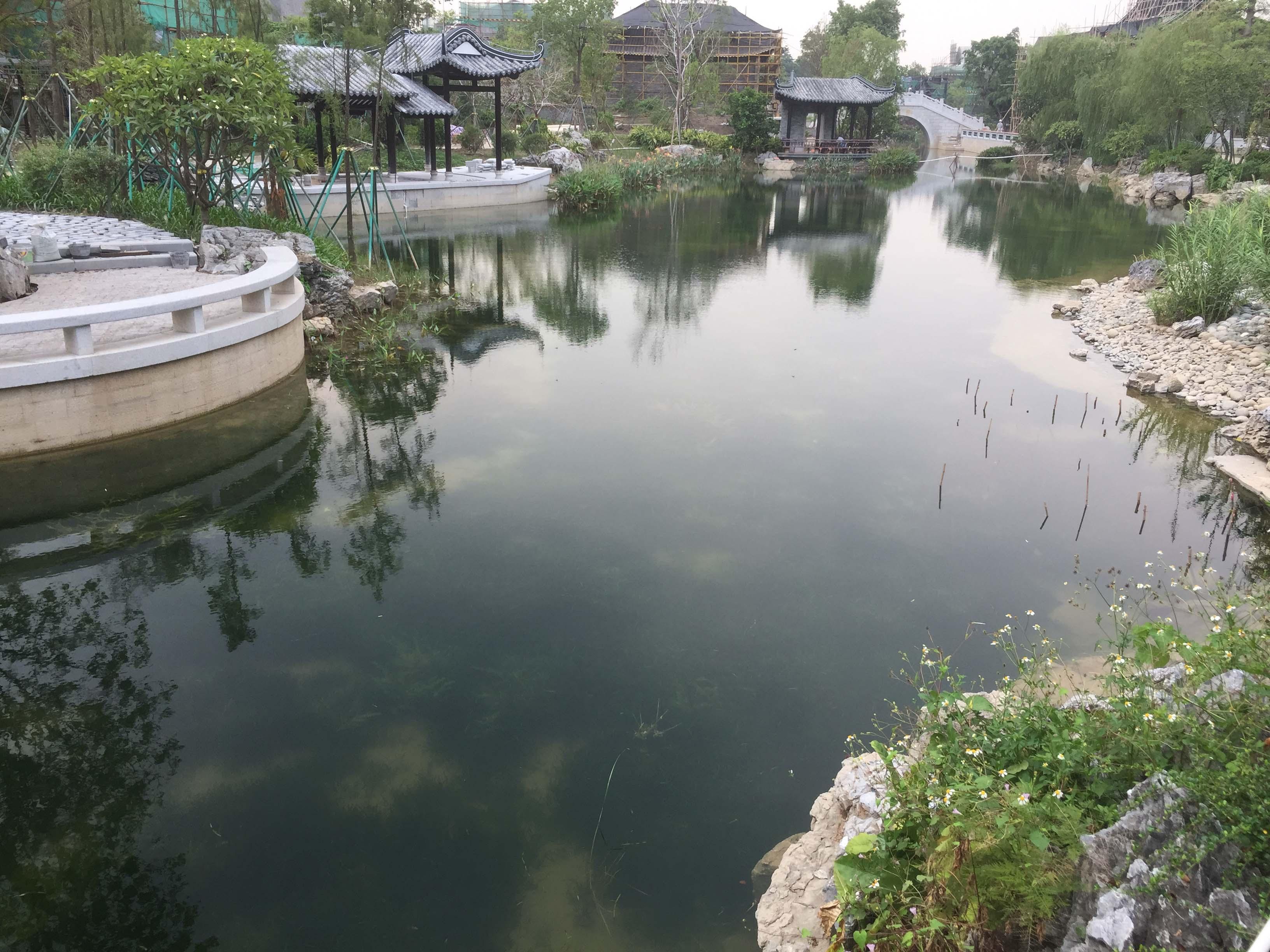 水环境生态系统清水型修复技术